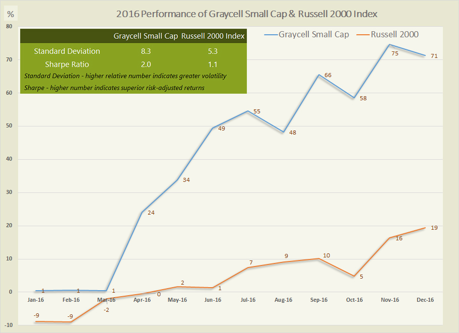 Small Cap Performance 2016 ~ Graycell Advisors